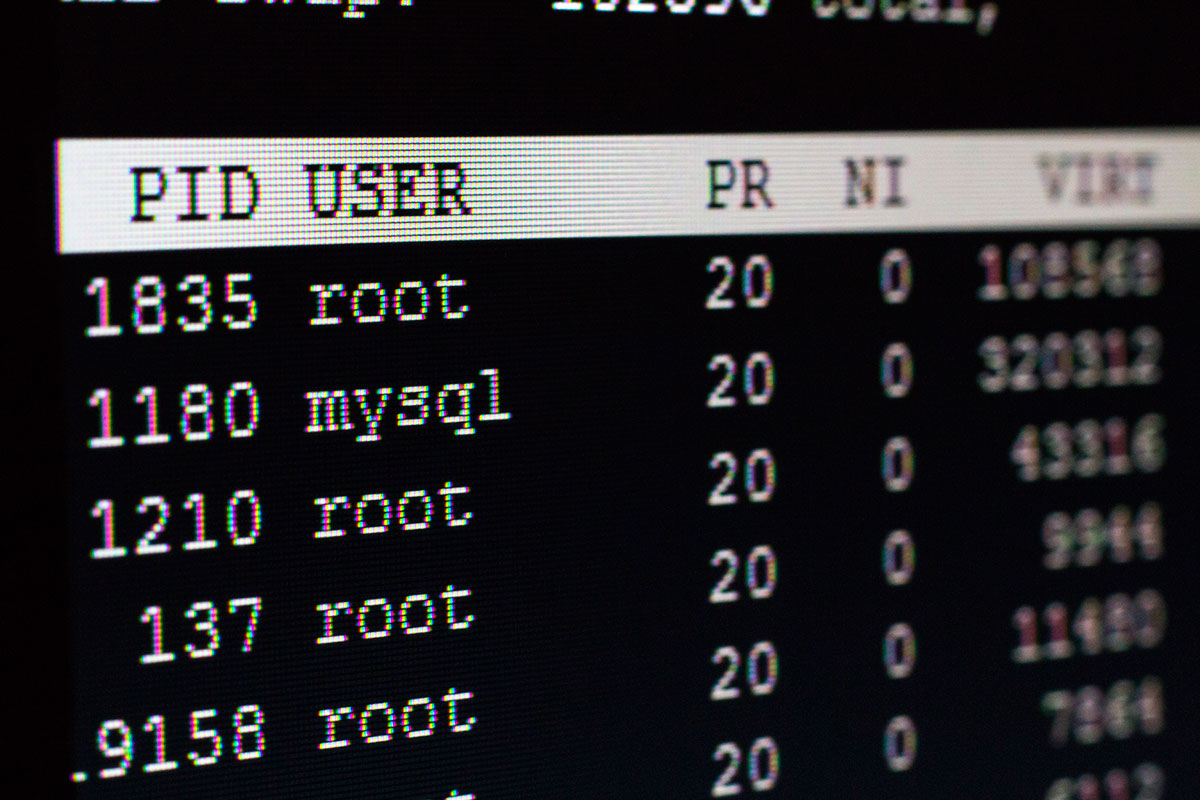 "Fotografía ""macro"" de mi pantall con un terminal Linux"